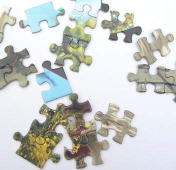 Come creare un puzzle in Flash Con CS3