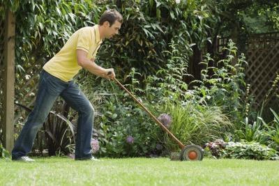 Giochi taglio erba