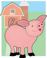 Che cosa Pig Pile significa?