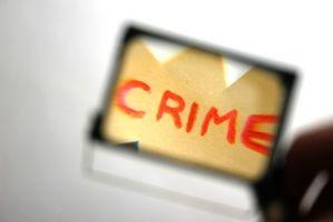 Criminologia di criminalità informatica