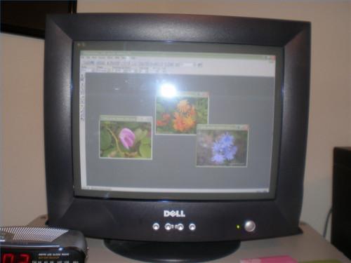 Come trasferire le foto digitali dalla fotocamera digitale al computer