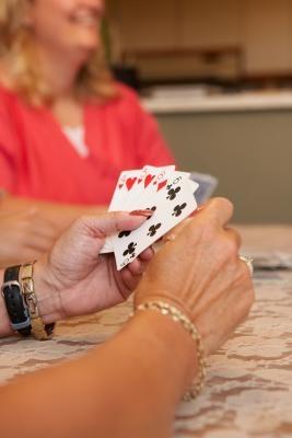 Puzzle Hoyle & Giochi da tavolo per Mac
