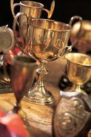 """Che cosa significa il Aeris PVP Trofeo fare a """"DragonFable""""?"""