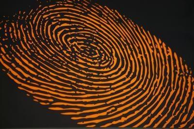 Come rimuovere le impronte digitali di Dell D630