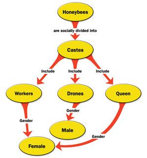 Come fare una mappa concettuale in Microsoft Word