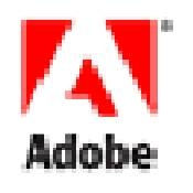 Come convertire Adobe per Word