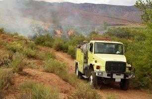 Formazione online per incendi boschivi investigatori