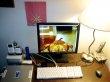Come trovare un lavoro vero che si può lavorare online da casa
