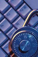 Tipi di hacker etici