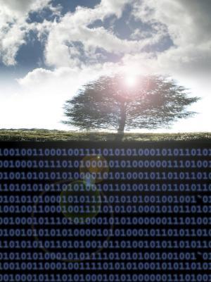 Come copiare testo da cellulare DataGridView a Excel