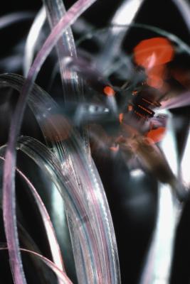 Come collegare una fibra ottica monomodale di una fibra multimodale