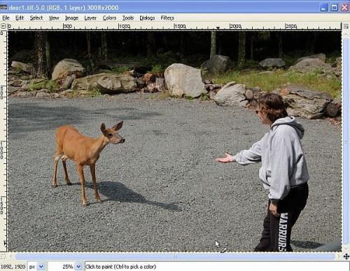 Come modificare un'immagine con GIMP Gratuito