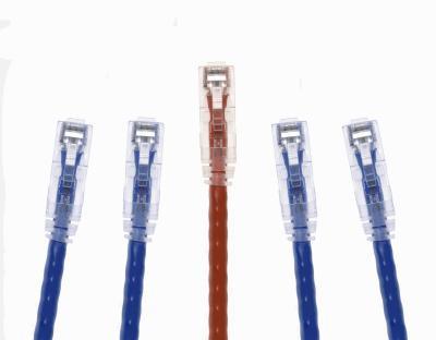 Come ottenere Windows 98 per rilevare cavi Ethernet senza dischi