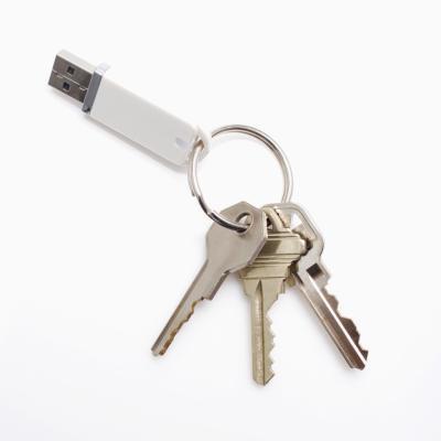 Che cosa è un USB Flash Drive?