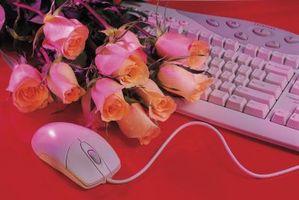 Online Dating Suggerimenti per gli adolescenti