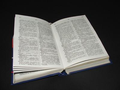 Come risolvere il dizionario in Microsoft Word
