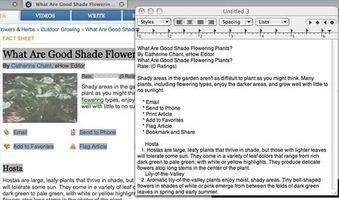 Come convertire HTML in testo normale