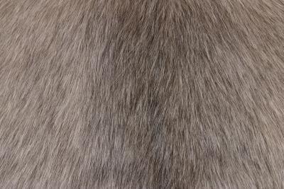 Come sviluppare capelli sull'utilizzo di IMVU Gimp