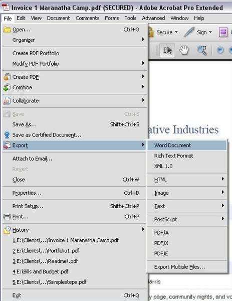 Come convertire file PDF crittografati per Word