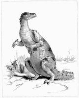 Come fare un dinosauro sul computer