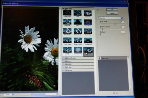 Come fare un dipinto da una foto con Photoshop