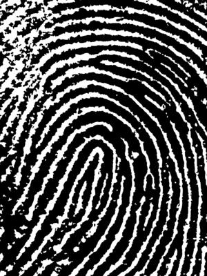 Come disattivare il sensore di impronte digitali su un computer portatile HP