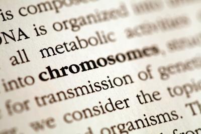 Come creare un glossario in Word 2007