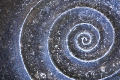 Come disporre il testo intorno una forma in una spirale in Photoshop